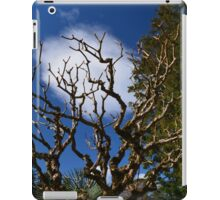 Interesting tree branches against blue sky and white clouds. floral nature garden photography. iPad Case/Skin