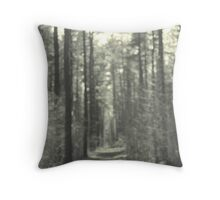 A homage to Photosessionist George Seeley Throw Pillow