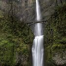 Multnomah Falls by steini