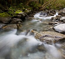 Mountain stream by Will Hore-Lacy