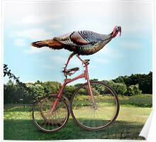 Lake Washington Turkey. Poster