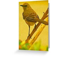 Chatty Kathy Greeting Card