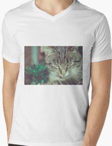Retro Tabby Cat and Green Tinsel 4 Mens V-Neck T-Shirt