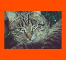 Retro Tabby Cat and Green Tinsel 5 Kids Clothes
