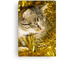 Tabby Cat and Yellow Tinsel 2 Canvas Print