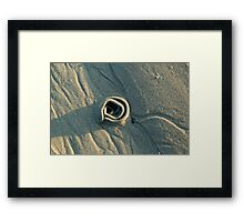 Sand Rose Framed Print
