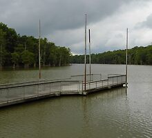 Dock At Cooks Lake by WildestArt