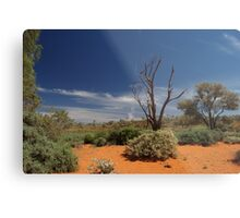 Outback Afternoon Metal Print