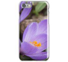 Crocus Blossoms iPhone Case/Skin