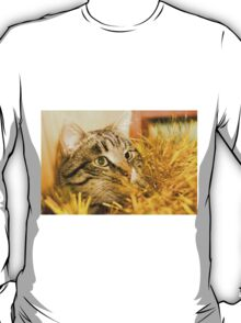 Tabby Cat and Yellow Tinsel 5 T-Shirt