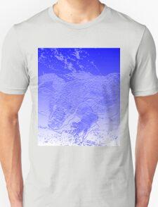Diving Komodo T-Shirt