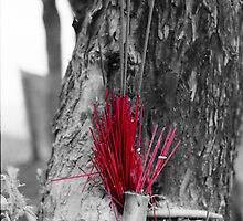Joss sticks by fritsswanepoel