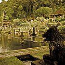 Tirta Gangga - Bali, Indonesia by Stephen Permezel
