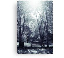 soleil du midi _v2 Canvas Print