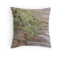 Lichen patch in the fence.  Throw Pillow