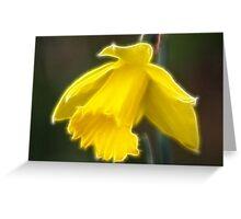 Lone daffodil Greeting Card