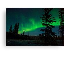 Northern Nights #2000 Canvas Print