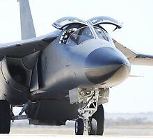 F-111 at Avalon airshow by Eddie  Wassenaar