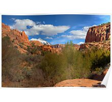 Moab Backcountry Poster