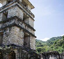 Zona Arqueológica Palenque, Mexico by Tess Mitchell