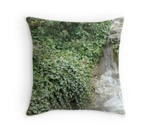 Waterfall through Ivy Throw Pillow
