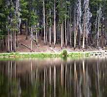 Reflections in Sprague Lake by Jackie Reitsma