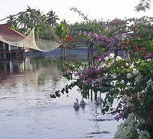 Ducks, fishing net, flowers, water and cottages make a great photo by ashishagarwal74