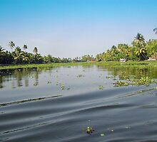 Ripples on the water of the saltwater lagoon in Alleppey by ashishagarwal74