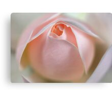 Winchester Cathedral - Pink Canvas Print
