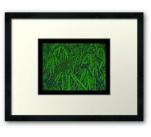 Bamboo Curtain Framed Print