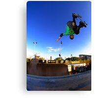Tony Hawk - Monster Skate Park Canvas Print