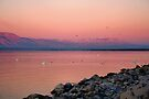 Morning Dawn Salton Sea by Jo Nijenhuis