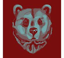 Bear Photographic Print