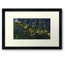 Reticulated Python Framed Print