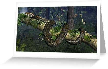 Reticulated Python by Walter Colvin