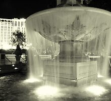 Fountain by Susan Zohn