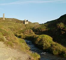 Blue Hills Valley - Cornwall by cornwall-photos