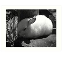 Beautiful dreamer, black and white Art Print