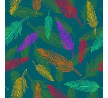 Сolor feathers pattern  Photographic Print