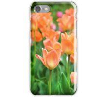 Tulips iPhone Case/Skin