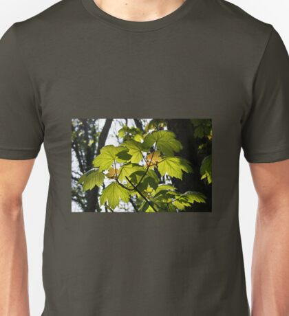 Young Sycamore Leaves Unisex T-Shirt
