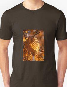Aged Beech Leaves T-Shirt