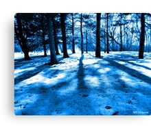 Blue Forest Natural Light and Shadow Canvas Print