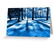 Blue Forest Natural Light and Shadow Greeting Card