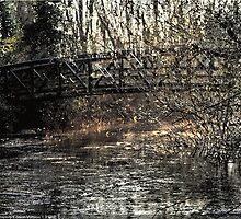 winter bridge by shaun pearce