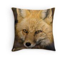 Close Encounters Throw Pillow