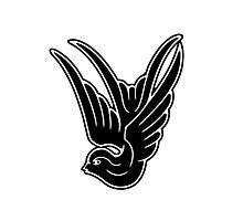 Black Swallow Photographic Print