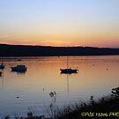 Cayuga lake sunset  by PJS15204