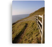 Cornwall: The Neverending Fence Canvas Print