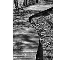 The Winding Path Photographic Print